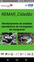 Rede de Monitoramento (REMAR) cria aplicativo para auxílio na proteção de caranguejos.