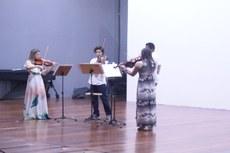 Quarteto Viola 4