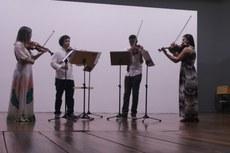 Quarteto Viola 5