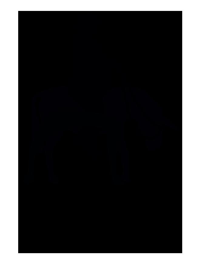 logo_editoraccta.png