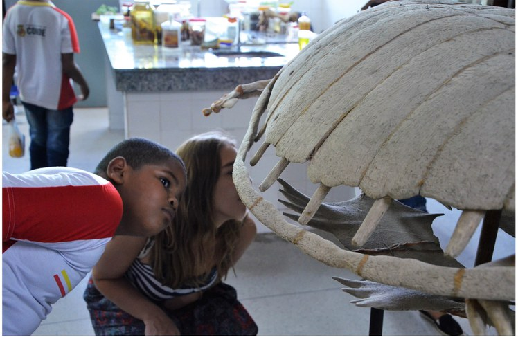 Estudantes visitam a UFPB para aprender sobre o meio ambiente
