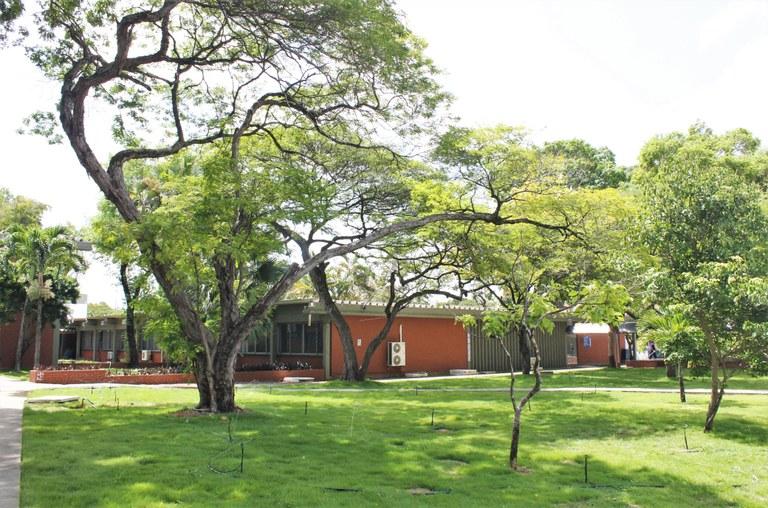 CCHLA - Centro de Ciências Humanas, Letras e Artes.  Foto: Angélica Gouveia